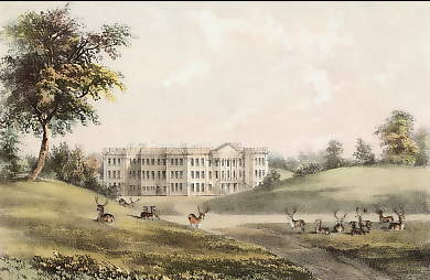 Calke Abbey, C° Derby