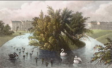 An Island on the Lake & Part of Cornwall & Clarence Terrace, Regent´s Park