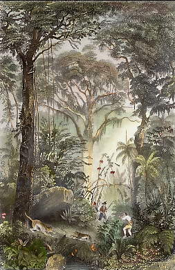 A Scene in the Brazilian Forest (Tiger Hunt )