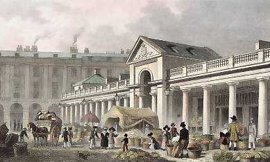 The N. W. Facade of the New Covent Garden Market